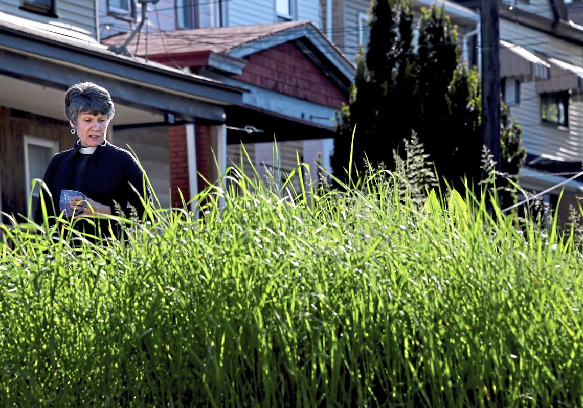 Woman looking at lot poisoned by lead